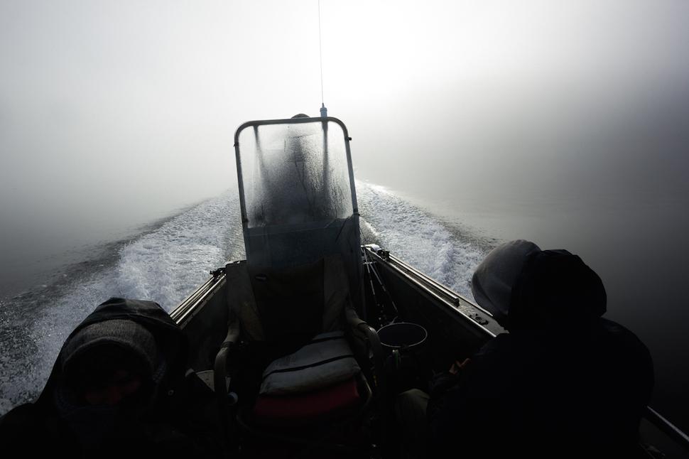 В диких условиях: сбежать на Аляску и выращивать устрицы